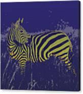 Zebra At Night Canvas Print