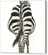 Zebra Back Canvas Print