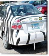 Zebra Car Rear Canvas Print