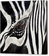 Zebra Eye Canvas Print