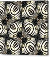Zebra IIi Canvas Print
