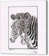 Zebra Series 6 Canvas Print