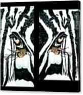 Zebras Eye - Studio Abstract  Canvas Print