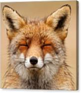 Zen Fox Red Fox Portrait Canvas Print