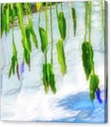 Zen Reflection Canvas Print