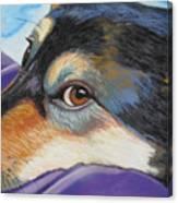 Zia's Look Canvas Print
