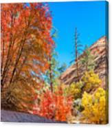 Zion Autumn Colors Canvas Print