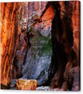 Zion Narrows With Boulder Canvas Print