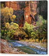 Zion National Park 57 Canvas Print