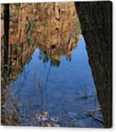 Zion Reflections Canvas Print