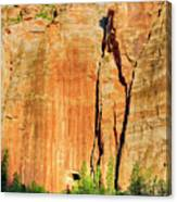 Zion Rock Wall Canvas Print