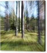 Zoom Photo Canvas Print