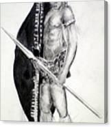 Zulu Roarkes Drift Canvas Print