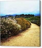 Zuma Beach Pathway Canvas Print