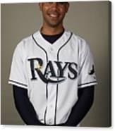 2010 Major League Baseball Photo Day 1 Canvas Print