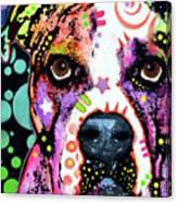 American Bulldog Canvas Print