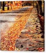 Autumn Avenue Canvas Print