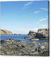 cliffs and coast at St. Abbs, Berwickshire Canvas Print