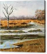 Early Spring On The Marsh Canvas Print