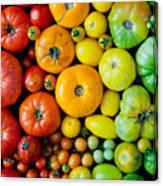 Fresh Heirloom Tomatoes Background Canvas Print