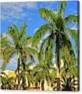 Glorious Palms Canvas Print