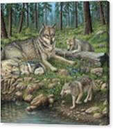 Grey Wolf Mother And Pups Canvas Print