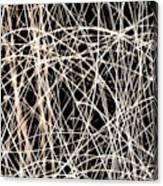 Lighttrails Canvas Print