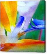 Natural High Canvas Print