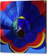 Northern Pintail (anas Acuta Canvas Print