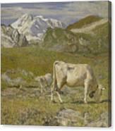 Pascoli Di Primavera Spring Pastures Canvas Print