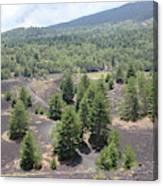 Photography Landscape Shot From The Etna National Park On Sicily Canvas Print