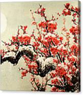Plum Blossom Canvas Print