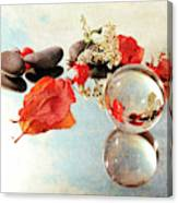 Seasons In A Bubble Canvas Print
