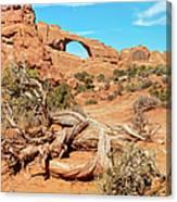 Skyline Arch, Arches National Park Canvas Print