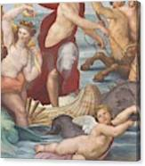 Triumph Of Galatea, Detail Canvas Print