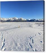 Turnagain Arm And Chugach Range From Hope Alaska Canvas Print