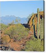 View To Four Peaks  Canvas Print