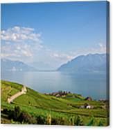 Vineyards Around Lake Leman Canvas Print
