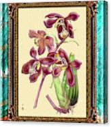 Vintage Orchid Antique Design Marble Caribbean-blue Canvas Print