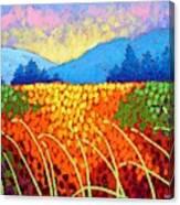 Violet Hills  Canvas Print
