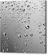 Water Drops Background Dew Condensation Canvas Print