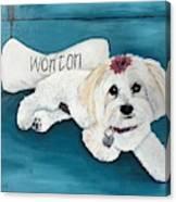 Wonton Canvas Print