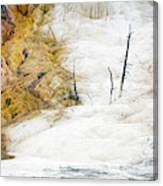 1474 Scorched Earth Canvas Print