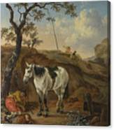 A White Horse Standing By A Sleeping Man  Canvas Print