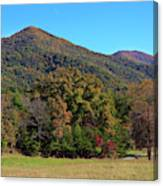 Autumn Colours In Great Smoky Mountains National Park Canvas Print