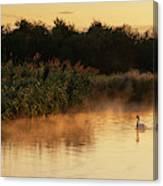 Beautiful Dawn Landscape Image Of River Thames At Lechlade-on-th Canvas Print
