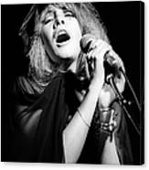 Fleetwood Mac Live Canvas Print