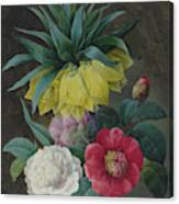 Four Peonies And A Crown Imperial  Canvas Print