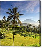 Indonesia, Bali, Rice Fields And Agung Canvas Print