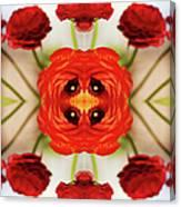Ranunculus Flower Canvas Print